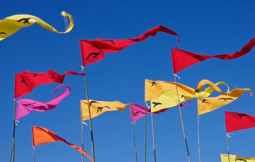 De vlag kan uit: vanaf 26 juni weer samen zingen!